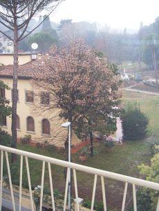 Appartamento zona Stibbert-Ponte Rosso