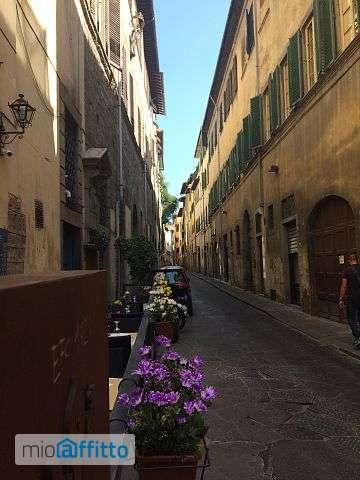 Vero centro storico Firenze